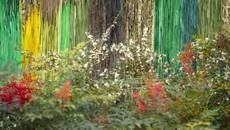 Chaumont-sur-Loire, les liaisons enchanteresses entre art contemporain, nature et patrimoine